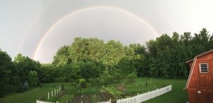 rainbow over the farm